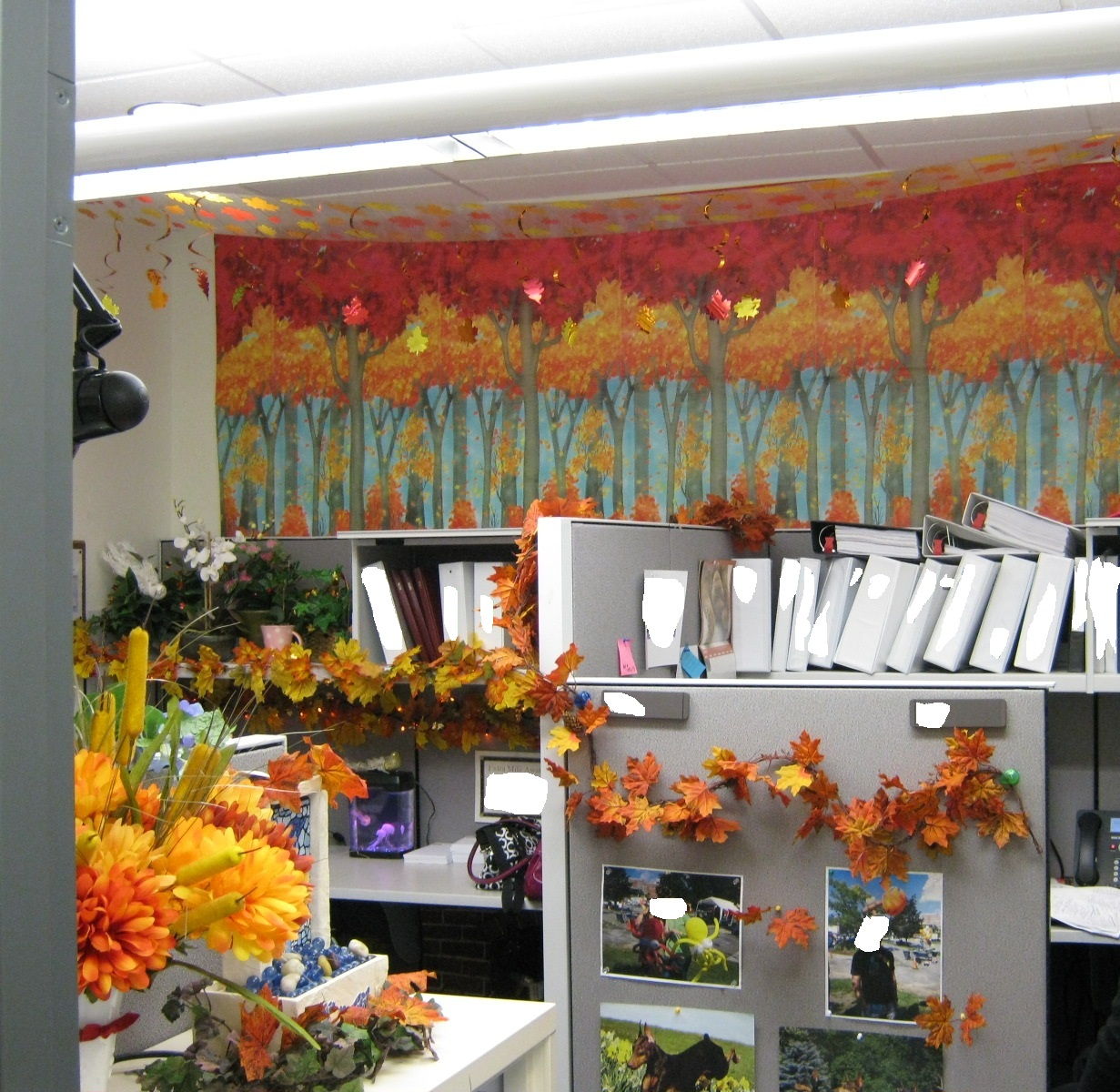 fall office decorations. fall office decorating ideas decor the lab decorations a